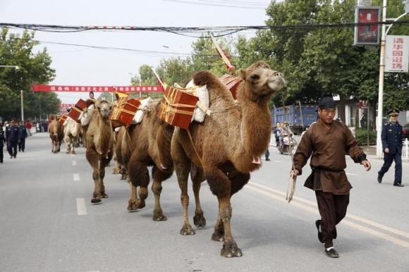 An man in ancient Chinese costume walks next to a camel while participating in the Silk Road Cultural Journey, in Jingyang