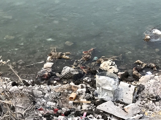 Corpses bob in the waters of the Tigris (MEE)
