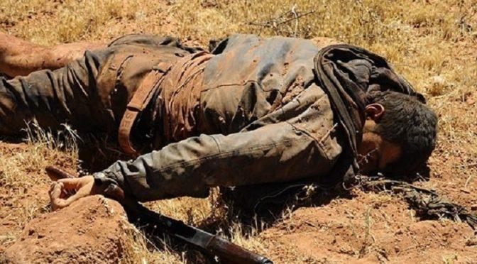7 Al Qaeda Leaders Killed, Gov't Forces Inflict Devastating Strikes vs. ISIS Post Flight 7K9268 Crash