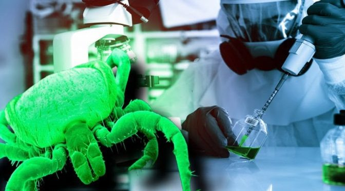 The Military and Intelligence Origins of Public Health